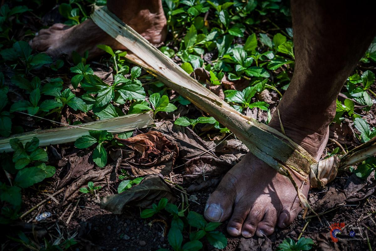 Pour grimper aux cocotiers