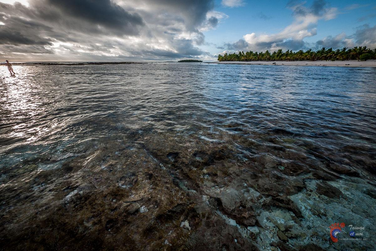 Récif - Atoll de Tikehau