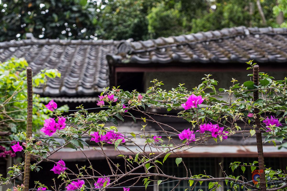 Maison japonaise dans le quartier de Qingtian à Taipei