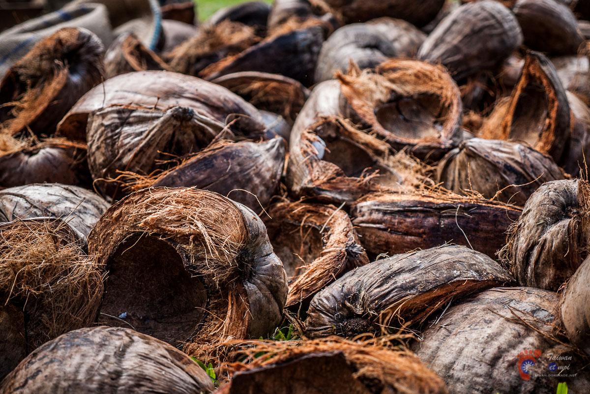 Compétition de dépeçage de cocos