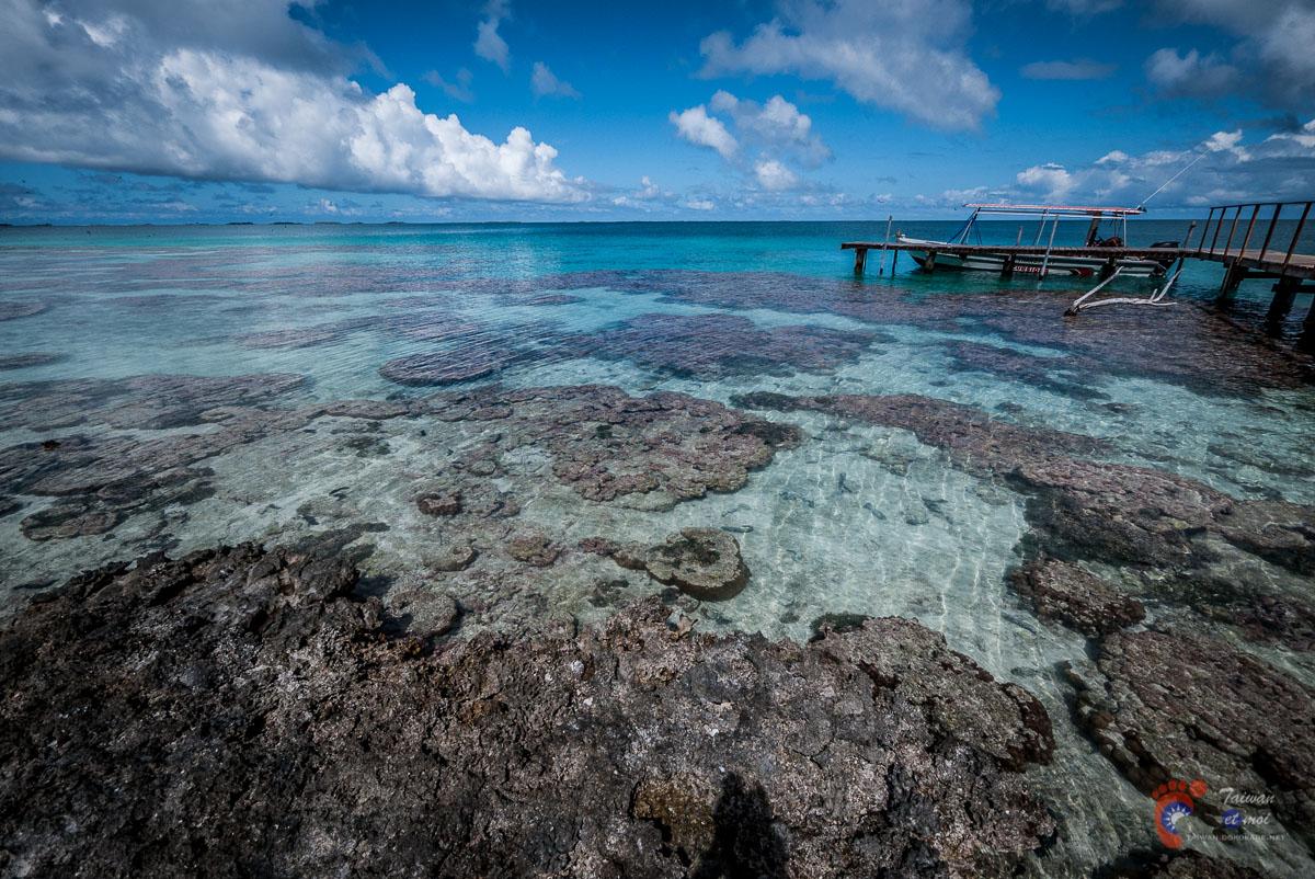 Île aux oiseaux - Atoll de Tikehau
